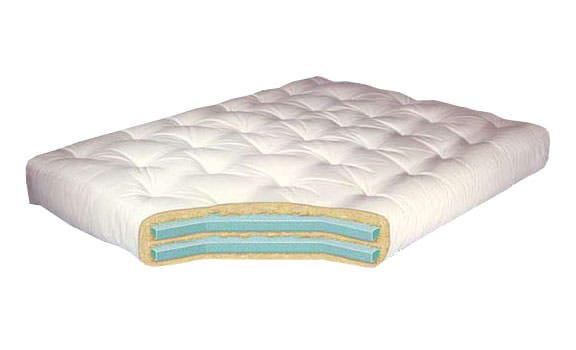 Double Foam 8 Inch Futon Mattress by Gold Bond