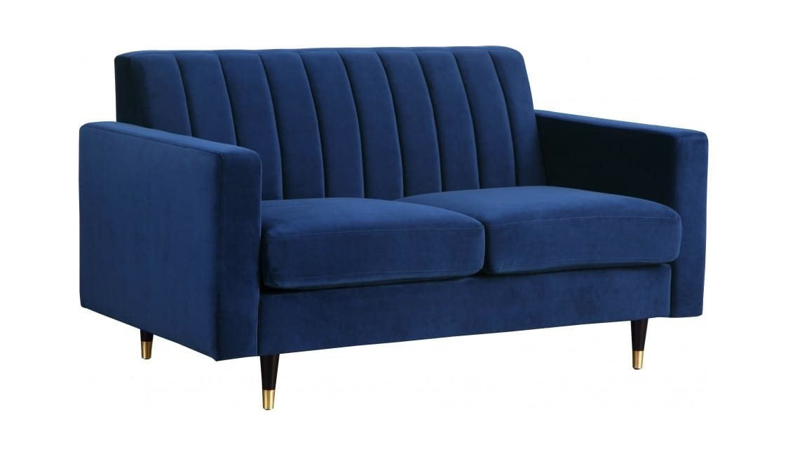 Astounding Lola Navy Blue Velvet Loveseat By Meridian Furniture Squirreltailoven Fun Painted Chair Ideas Images Squirreltailovenorg