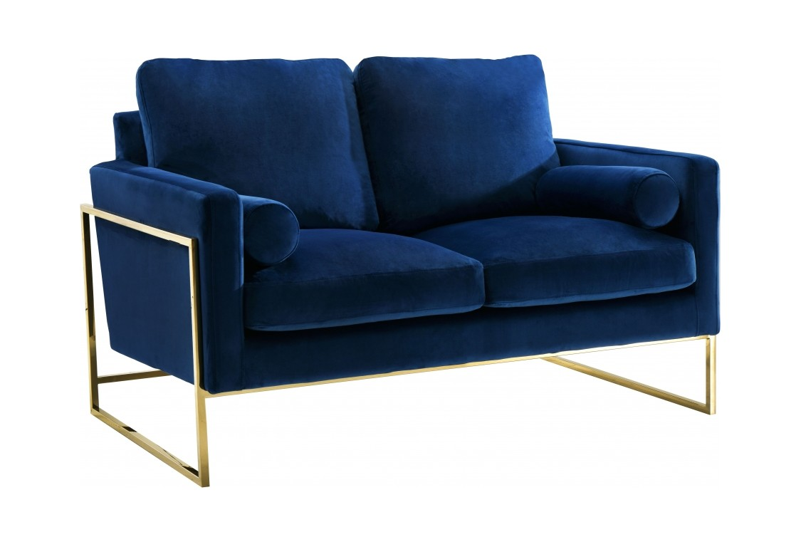 Marvelous Mila Navy Blue Velvet Loveseat By Meridian Furniture Squirreltailoven Fun Painted Chair Ideas Images Squirreltailovenorg