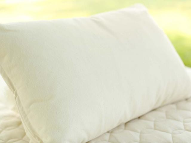 organic certified pillow pillows dream shop resized s shepherd wool